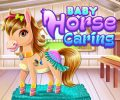 Baby Horse Caring