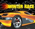 Winter Race