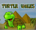 Turtle Walks