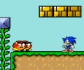 Sonic in Mario Crazy World